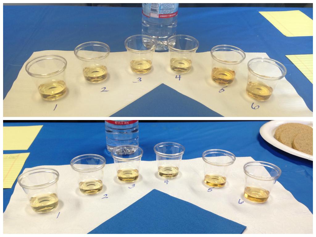 Whisky tasting, before